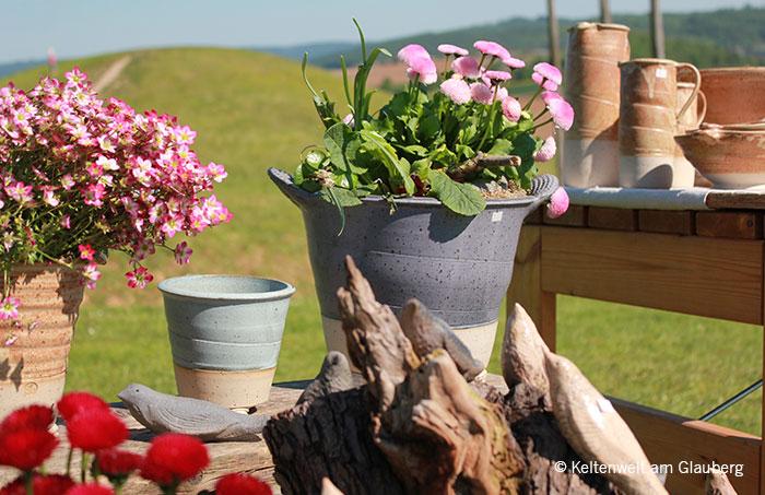 Frühlingsfest in der Keltenwelt – Die Region erblüht